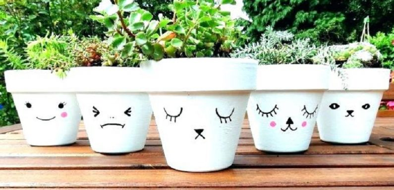 Where Can You Buy Flower Pots?